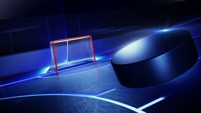 Fototapeta Hockey ice rink and goal