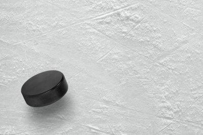 Fototapeta Hokej puk na ledě