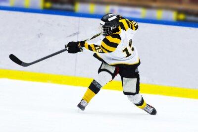 Fototapeta Hokejista - Slap Shot