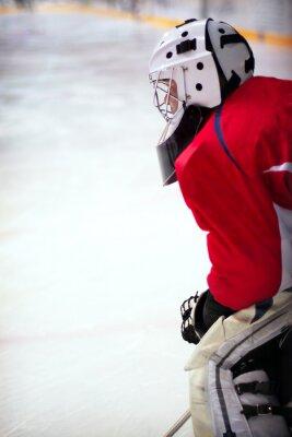 Fototapeta hokejový brankář