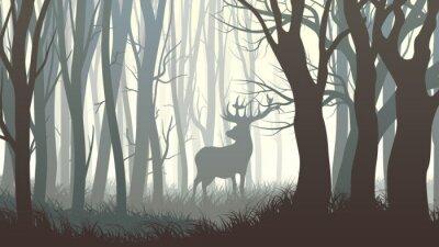 Fototapeta Horizontální ilustrační divokých losů ve dřevě.