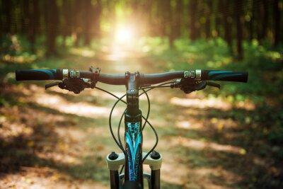 Fototapeta Horská cyklistika kopce dolů klesající rychle na kole. pohled z