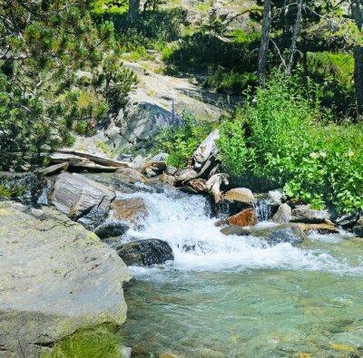 Fototapeta horská řeka a jehličnatého lesa