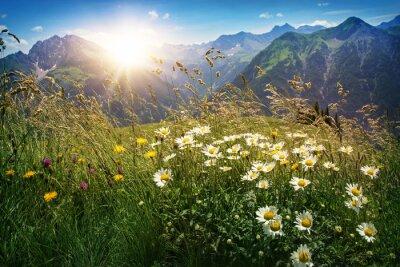 Fototapeta Hory krajiny ve Vorarlbergu