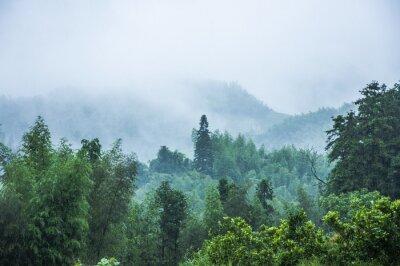 Fototapeta Hory scenérie v dešti a mlze