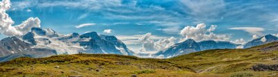 Fototapeta Icefield park Glacier pohled panorama