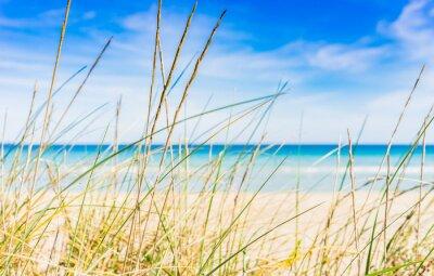Fototapeta Idylické pláže přestávku na odpočinek