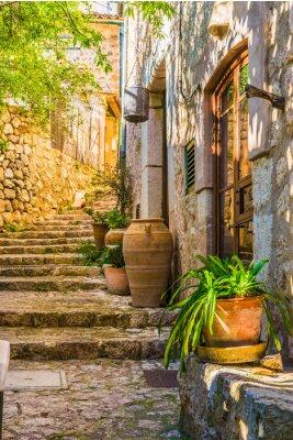 Fototapeta Idylický pohled na středomořské rustikální domu a kamenných schodech