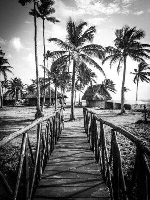 Fototapeta Island Life