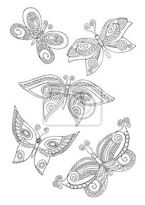 Izolovane Fantasy Dekorativni Motyly Rucne Kresleny Obrazek