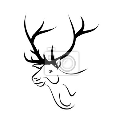 Jelení hlava logo vektor fototapeta • fototapety los 850e761c15