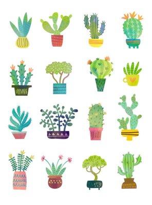 Fototapeta kaktusový akvarel plakát