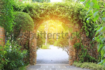 Fototapeta Kamenný oblouk vstupní brána pokrytá břečťanem. Oblouk do parku se slunečním světlem.