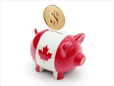 Kanada Peníze Concept Piggy Concept
