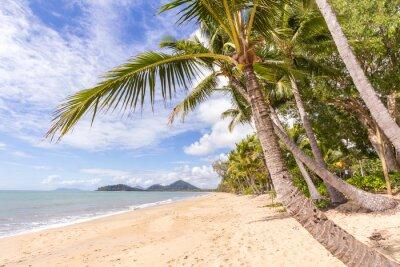 Fototapeta Karibská pláž