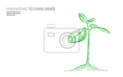 Fototapeta Klíčení rostlin ekologický abstraktní koncept. 3D vykreslování sazenice listy stromu. Uložit planetu přírodní prostředí růst život eco mnohoúhelníky trojúhelníky nízké poly vektorové ilustrace
