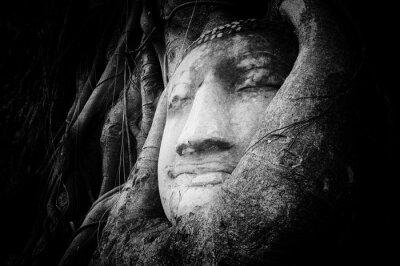 Fototapeta Klidný a klidný tvář Buddhy vytesané na starého kamene