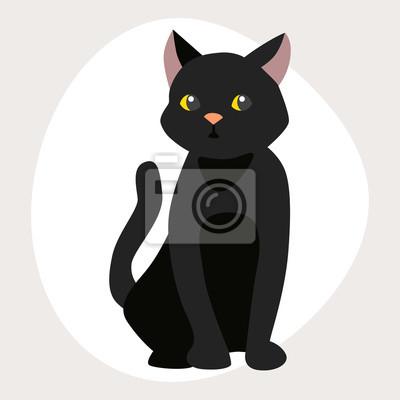 Fotky docela černé kočičky