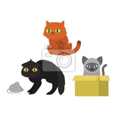 Fototapeta Kočky kolekce vektor siluetu. Roztomilé kočky domácí různých zvířat. Různé kočky mladý rozkošný ocas symbol hravý tlapka. Kreslený vtipný stojící výkres domácí kočička znaky nastaven.