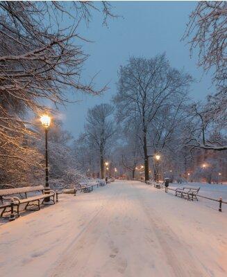 Fototapeta Krakov, Polsko, alej v parku Planty vidět v dopoledních hodinách v průběhu sněhu.