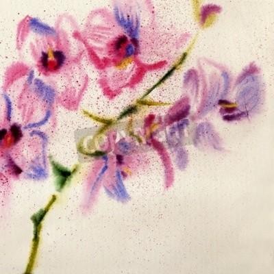 Fototapeta Krásná akvarelová orchidej