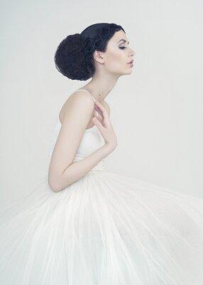 Fototapeta Krásná baletka