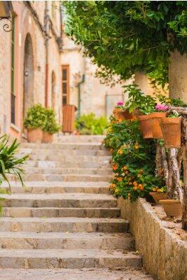 Fototapeta Krásná kamenná schodiště s hrnkové dekorací