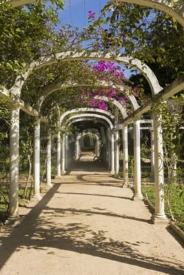Fototapeta Krásná Obloukové Pergola Nekonečná cesta v botanické zahradě, Rio de Janeiro, Brazílie