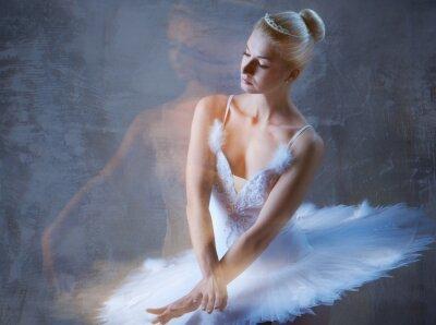 Fototapeta Krásné baletní tanečník