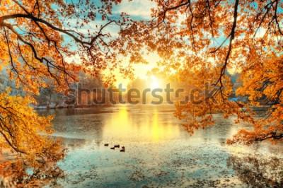 Fototapeta Krásné barevné stromy s jezerem na podzim, krajina fotografie. Pozdní podzim a časné zimní období. Venkovní a příroda.