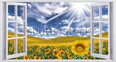 Fototapeta Krásné letní krajina, zobrazení okna