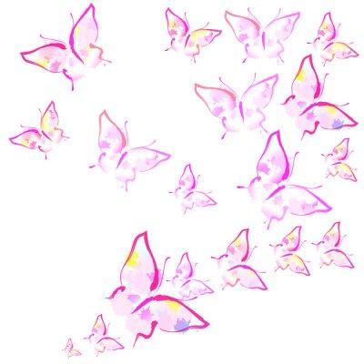 Fototapeta krásné růžové motýly, izolovaných na bílém