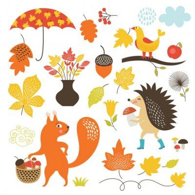 Fototapeta Kreslený film zvířata a podzimní prvky, vektorový soubor