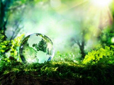 Fototapeta Křišťálový glóbus na mechu v lese - životní prostředí koncepce