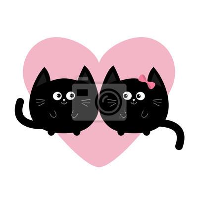 velký černý kohout a těsně bílá kočička