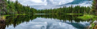 Fototapeta Lake poblíž Mendhenall ledovec obrovské krajiny