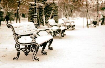 Fototapeta Lavička v zasněžené zimě park