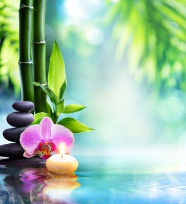 Fototapeta lázeňské zátiší - svíčka a kámen s bambusovými v přírodě na vodě