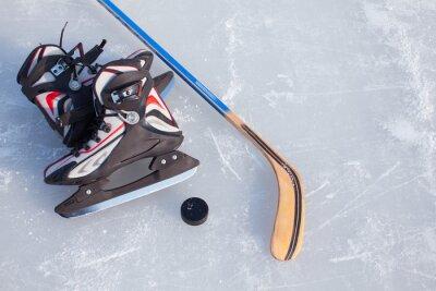 Fototapeta Lední hokej.