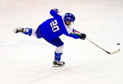 Fototapeta lední hokejista