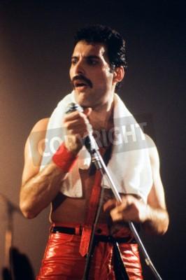 Fototapeta Leiden, Nizozemsko - 27.listopadu 1980: Freddy Mercury zpěvák britské skupiny královna během koncertu v Groenoordhallen v Leidenu v Nizozemsku