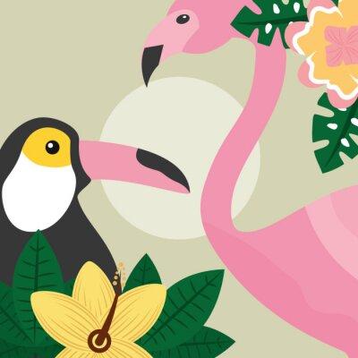 Fototapeta letní čas tropických ptáků toucan a flamingo vektorové ilustrace