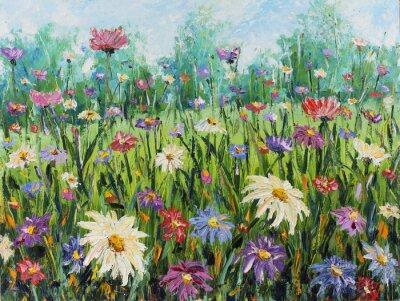 Fototapeta Letní divoké květiny, olejomalba
