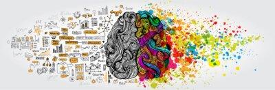 Fototapeta Levá pravá koncepce lidského mozku. Kreativní část a logická část se společenským a obchodním doodlem