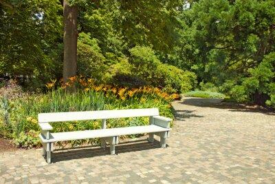 Fototapeta Lonely dřevěné lavice v parku.