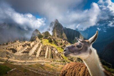 Fototapeta Machu Picchu, seznamu světového dědictví UNESCO. Jedním z nových sedmi W
