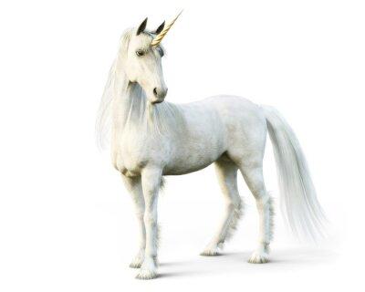 Fototapeta Majestátní jednorožec pózuje na bílém izolované pozadí. 3d rendering