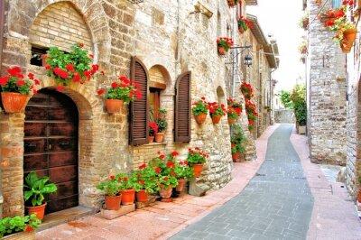Fototapeta Malebná ulička s květinami v italské Hilltown