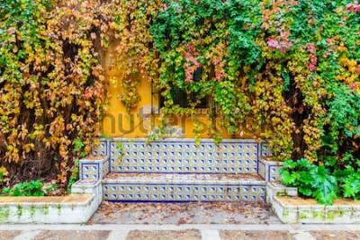Fototapeta malebný obrázek lavice s tradičními dlaždicemi před stěnou révy