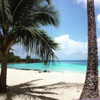 Fototapeta Martinik